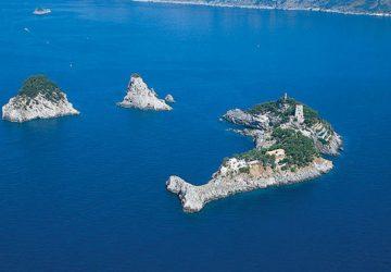 Isola a forma di delfino